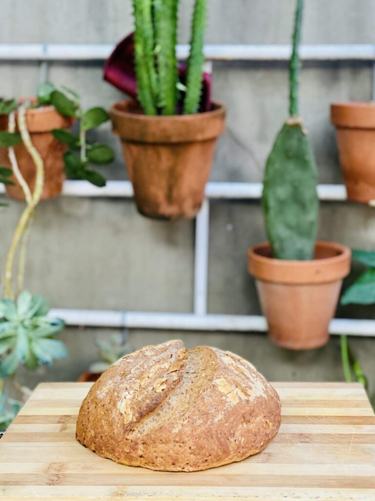 Gluten free sourdough made by Judit Travels in Buenos Aires